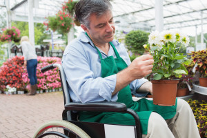 Employee in Wheelchair (Plant)